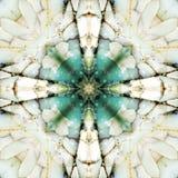 Quadrato del caleidoscopio: strati della selce cornea, costa dell'Oregon Fotografia Stock