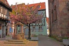 Quadrato del villaggio nell'Alsazia Francia fotografia stock