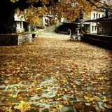 Quadrato di autunno di Tsepelovo Immagini Stock Libere da Diritti