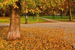 Quadrato di città nel fogliame dorato di autunno Fotografie Stock