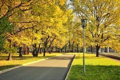 Quadrato di città nel fogliame dorato di autunno Immagini Stock