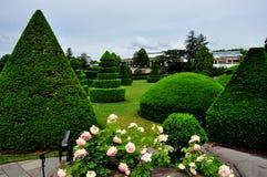 Quadrato di Kennett, PA: Alberi dell'ars topiaria dei giardini di Longwood immagini stock libere da diritti