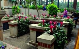 Quadrato di Kennett, PA: Giardino del ` s dei bambini ai giardini di Longwood fotografie stock