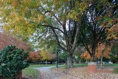 Quadrato di Nash in Raleigh del centro immagine stock libera da diritti