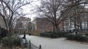 Quadrato di Stuyvesant video d archivio