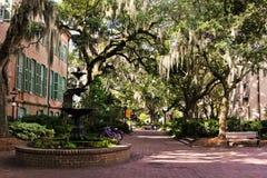 Quadrato per l'istituto universitario di Charleston, Carolina del Sud Fotografia Stock
