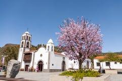 Quadrato principale della città Santiago del Teide e del mandorlo Fotografia Stock