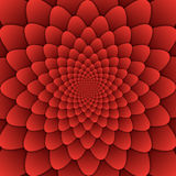 Quadrato rosso del fondo del modello decorativo della mandala del fiore dell'estratto di arte di illusione fotografie stock