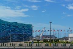 Quadrieren Sie im Olympiapark mit festlichen Flaggen von verschiedenen Ländern Adler, Sommer Stockbilder