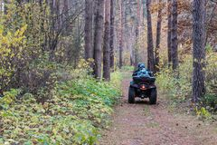 Quadrilátero de ATV com motorista e passageiro no trajeto pitoresco mágico na floresta do outono Imagens de Stock Royalty Free