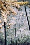Quadro agrícola com trigo Fotografia de Stock Royalty Free