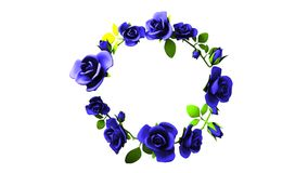 Quadro azul das rosas no espaço branco do texto video estoque