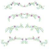 Quadro a beira, o ornamento decorativo floral com flores da aquarela, as folhas e os ramos Imagem de Stock