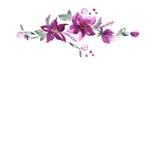 Quadro bonito da flor da aquarela ilustração do vetor