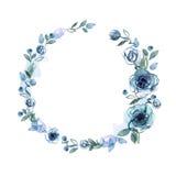 Quadro bonito da flor da aquarela Fundo com rosas azuis ilustração royalty free