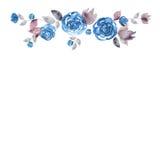 Quadro bonito da flor da aquarela Fundo com rosas azuis ilustração do vetor
