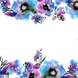 Quadro bonito da flor da aquarela Mão ilustração do vetor