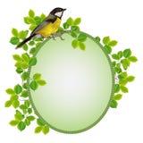 Quadro bonito em um quadro da folha com um pássaro Foto de Stock