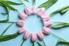 Quadro bonito feito das tulipas para o dia do ` s da mãe Imagem de Stock Royalty Free