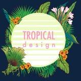 Quadro circular floral tropical Imagens de Stock Royalty Free