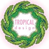 Quadro circular floral tropical Fotos de Stock Royalty Free