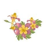 Quadro com as flores de florescência do branco Foto de Stock