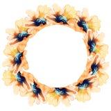 Quadro com cartão de sunflowers Projeto do feriado watercolor Imagem de Stock