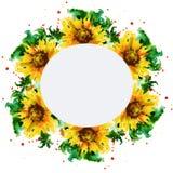 Quadro com cartão de sunflowers Projeto do feriado watercolor Fotografia de Stock