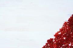 Quadro com corintos vermelhos em um fundo branco Foto de Stock