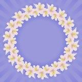 Quadro com flores Fotografia de Stock