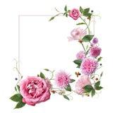 Quadro com flores cor-de-rosa Imagem de Stock Royalty Free