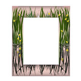Quadro com flores do lago Fotografia de Stock Royalty Free