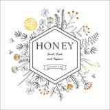 Quadro com flores e abelhas do mel Fotos de Stock