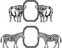 Quadro com os animais de África ilustração stock