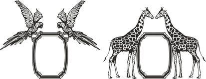 Quadro com os animais de África ilustração do vetor