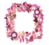Quadro com os shell do mar, as flores secadas, os galhos, as folhas e as pétalas isolados no fundo branco Encontrando-se para bai Imagens de Stock Royalty Free