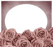 Quadro com rosas Fotos de Stock Royalty Free