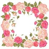 Quadro com rosas do vintage Flores retros decorativas Imagem para convites do casamento, cartões românticos, brochuras Imagem de Stock Royalty Free