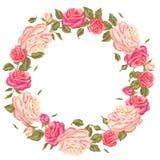 Quadro com rosas do vintage Flores retros decorativas Imagem para convites do casamento, cartões românticos, brochuras Foto de Stock Royalty Free