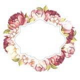Quadro com rosas Ilustração da aquarela da tração da mão Imagens de Stock Royalty Free
