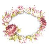 Quadro com rosas Ilustração da aquarela da tração da mão Fotografia de Stock