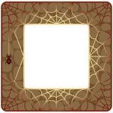 Quadro com Web de aranha Fotos de Stock