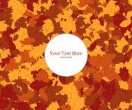Quadro composto das folhas de outono coloridas sobre o branco Folhas de Autumn Frame With Falling Maple do vetor ilustração stock
