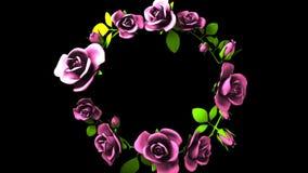 Quadro cor-de-rosa das rosas no espaço preto do texto vídeos de arquivo