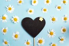 Quadro--coração vazio com as camomilas no fundo azul imagens de stock royalty free