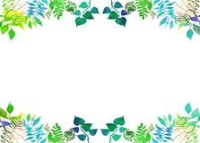 Quadro criativo para o projeto Elementos ervais da aquarela pintado à mão vibrante folhas do verde ilustração do vetor