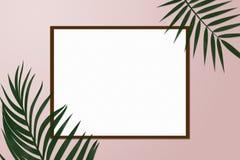Quadro criativo simples da natureza feito da palma tropical Imagem de Stock Royalty Free