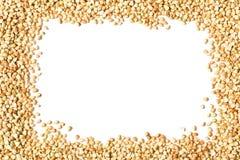 Quadro cru, natural, cru dos núcleos da semente do trigo mourisco Fotos de Stock Royalty Free