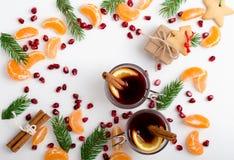 Quadro da árvore das sementes, dos mandarino e dos galhos da romã com dois imagem de stock royalty free