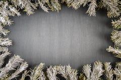 Quadro da árvore de abeto Imagens de Stock